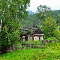 Заброшенный дом на Алтае. :: Штрек Надежда