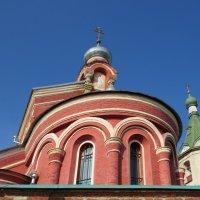 Маковка и колокольня :: Вера Щукина