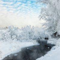 Зимний ручей :: Владимир Чуприков