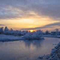 Жар-птица заката :: Юрий Велицкий
