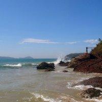 На диком пляже. :: Зоя Чария
