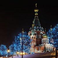 Скоро встретим Новый Год :: Владимир Максимов