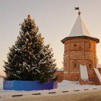 Новогодняя красавица и старая башенка... :: марк
