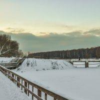 Пргулки по Зимнему Парку :: юрий поляков