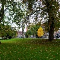 в парке у городских стен :: Heinz Thorns
