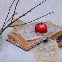Этюд яблоко на снегу :: Павлова Татьяна Павлова