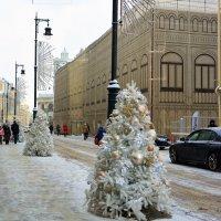 Зимняя Москва :: Ольга (crim41evp)
