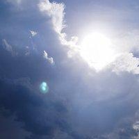 Солнышко выглянуло! :: Elena Wise