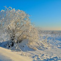 Зима на Урале. :: Александр Зуев
