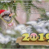 С Новым годом :: Андрей Поляков