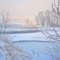 Зимний день на Енисее :: Екатерина Торганская
