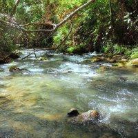 Люблю я прелесть горных рек.... :: Гала