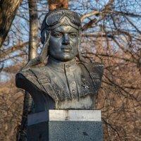 Бюст героя-лётчика, первостроителя города Алексея Маресьева. :: Виктор Иванович