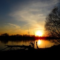 При свете уходящего солнца :: Андрей Снегерёв