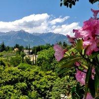 По  дорогам  Италии :: backareva.irina Бакарева