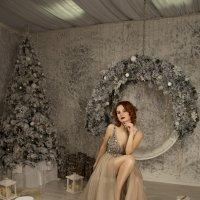 Новогодняя сказка :: Татьяна Мурзенко
