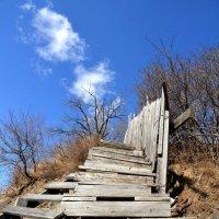 У каждого своя лестница ведущая на небеса :: Владимир Куликов