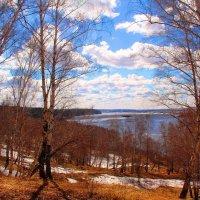 Весенний денек :: владимир тимошенко