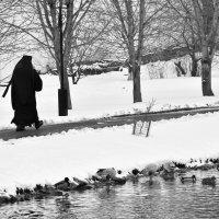 Снежный день марта. :: Татьяна Помогалова