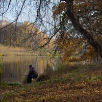 Осенняя рыбалка. :: Инна Щелокова