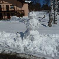 """25.03.20 - Закончился снегопад и наступило время """"зимних"""" забав!... :: Лидия Бараблина"""
