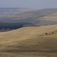 Долины долины :: M Marikfoto