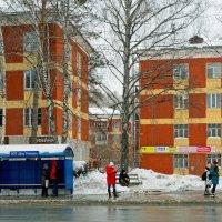 Улицы Новосибирска - Морской проспект, остановка :: Дмитрий Конев