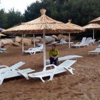 Вот и лето прошло... :: Андрей Хлопонин