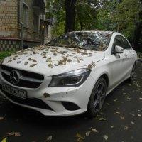"Осенний ""Mercedes"" :: Oleg4618 Шутченко"