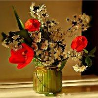 Долгожданная весна. :: ЛЮБОВЬ ВИТТ