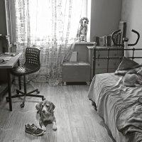Самоизоляция :: Тата Казакова