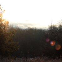 На закате :: Даниил Шадрин