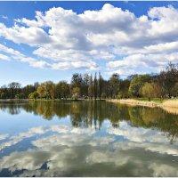 Парковое озеро. :: Валерия Комова