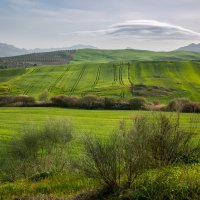 Весна в Андалусии :: Алекс Римский