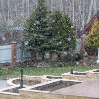В Подмосковье сегодня падал снег :: Agapa ***