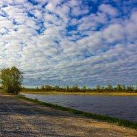 По дороге с облаками :: Денис Григорьев
