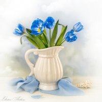 Синие тюльпаны :: Светлана Л.