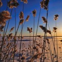 закат на озере :: Георгий А