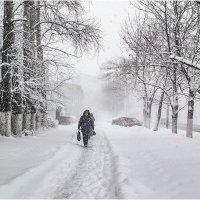Апрель. Временами снег, метель... :: Людмила Фил