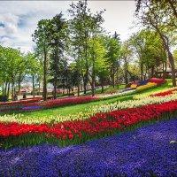 Парк Эмирган в апреле :: Ирина Лепнёва