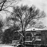 Зимний пейзаж :: Марина Кушнарева