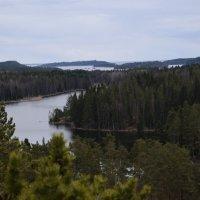 Вид с горы Риуттавуори на ладожские шхеры :: Андрей