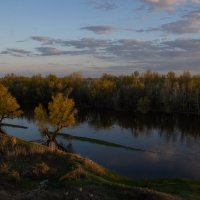 Прелесть весны- половодье в Астраханской области :: Марина