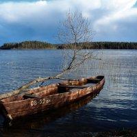 На озере весна.Лодочка.плыви.. :: Ольга Митрофанова