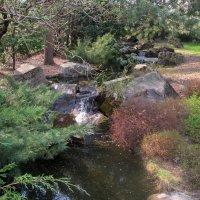 Каскадный ручей в Японском саду :: Ольга Довженко