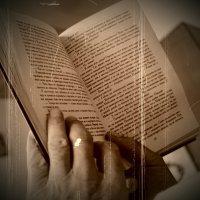 Чтение :: Александр Цюпай