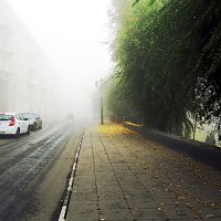 Туман в городе :: BOB