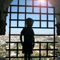 Иерусалим с высоты колокольни   Больницы Августа Виктория :: сашка ярмарков