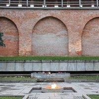 Вечный огонь :: Liudmila LLF