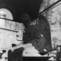«Ангел зари» (Зима. Некрополь Донского Монастыря) :: Andrew Barkhatov